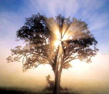 personalized acrylic mirror name signs
